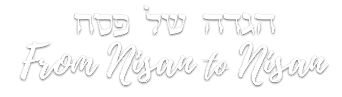 logo_nisan_to_nisan_website